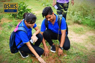 Tree Plantation Monthly Event